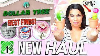 DOLLAR TREE HAUL FEBRUARY 2018 | CUTE NEW FINDS YOU DON