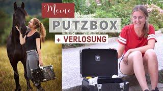NEUE Putzbox einräumen & Bürsten waschen | VERLOSUNG | Pilsali