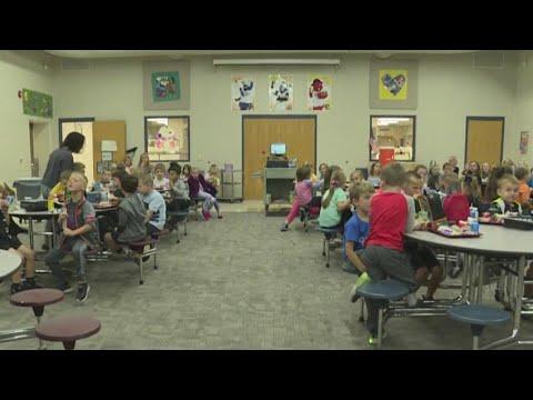Danville schools referenda