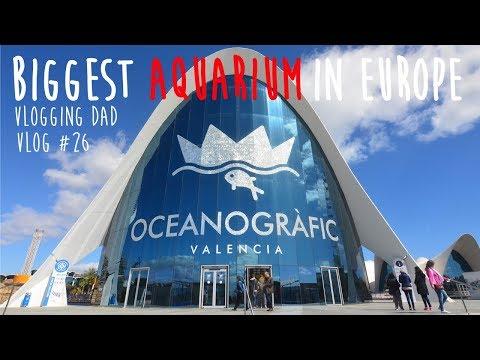BIGGEST AQUARIUM IN EUROPE - OCEANOGRAFIC, VALENCIA   VLOGGING DAD