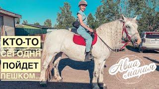 Катание на лошадях СПб | #Авиамания Санкт-Петербург | Загородный отдых 2020