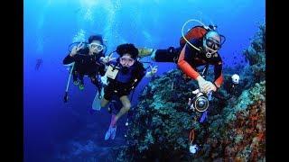 Trip อันดามันใต้ เจอแมนต้า(กระเบนราหู) MV Moana by ครูบูมสอนดำน้ำ T3B