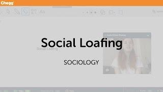 Social Loafing | Sociology | Chegg Tutors