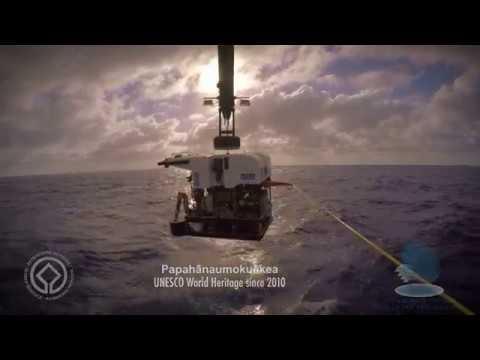Explore spectacular Papahānaumokuākea marine World Heritage site II