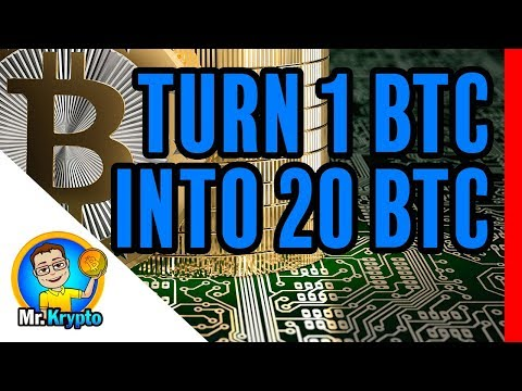 Turn 1 BTC to 20 in 1 Year