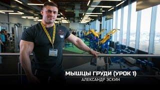 Мышцы груди (Урок 1). Александр Эскин (eng subtitles)