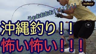【沖縄釣りat糸満漁港】人生初の釣り!!魚とラブストーリーは突然に!?