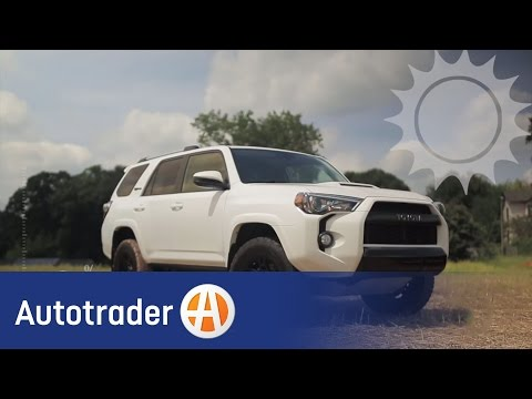 Car Color Test: Are Black Cars Really Hotter In The Sun?   Autotrader