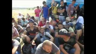Migranten-Invasion - wir werden für dumm verkauft ( Migrants´ invasion - we´re taken for a fool )