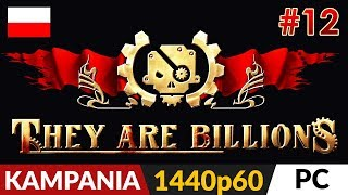 They Are Billions PL  Kampania odc.12 (#12)  Wąski na 200% cz.2 | Gameplay po polsku
