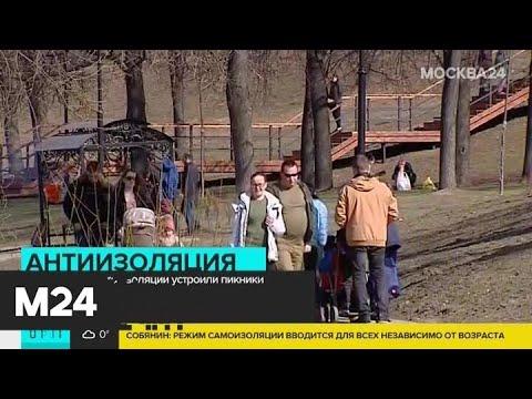 Москвичи вместо изоляции устроили пикник - Москва 24
