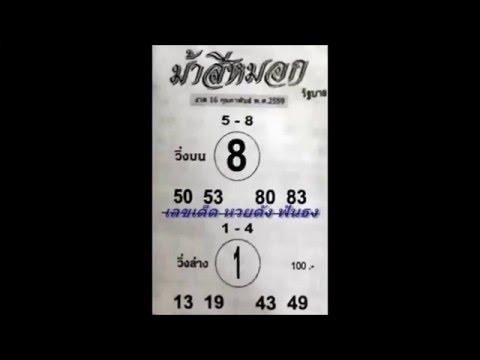 เลขเด็ด 16/2/59 ม้าสีหมอก หวย งวดวันที่ 16 กุมภาพันธ์ 2559