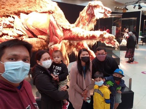 2020 The Yumul's and Friends Visited Telus Spark - BODY WORLDS: ANIMAL INSIDE OUT from YouTube · Duration:  3 minutes 41 seconds