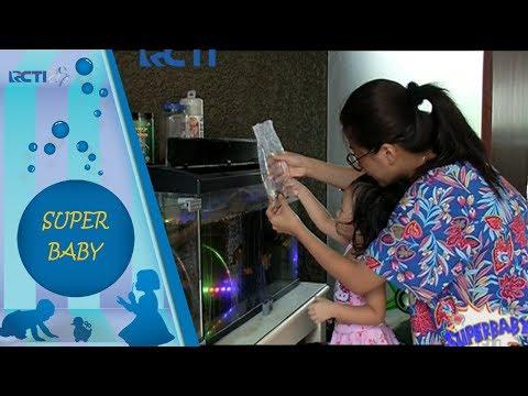SUPERBABY - Yeay Baby Thalia Punya Ikan Baru Di Aquarium [28 November 2017]
