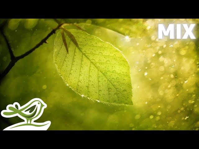Peder B. Helland - Rainy Days (Full Album)