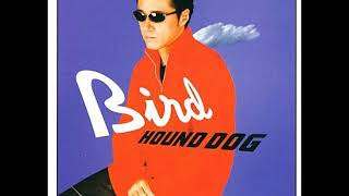 BIRD(2001年6月20日) アルバム、未収録。