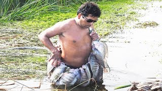 Pesca de Tilapias GIGANTES