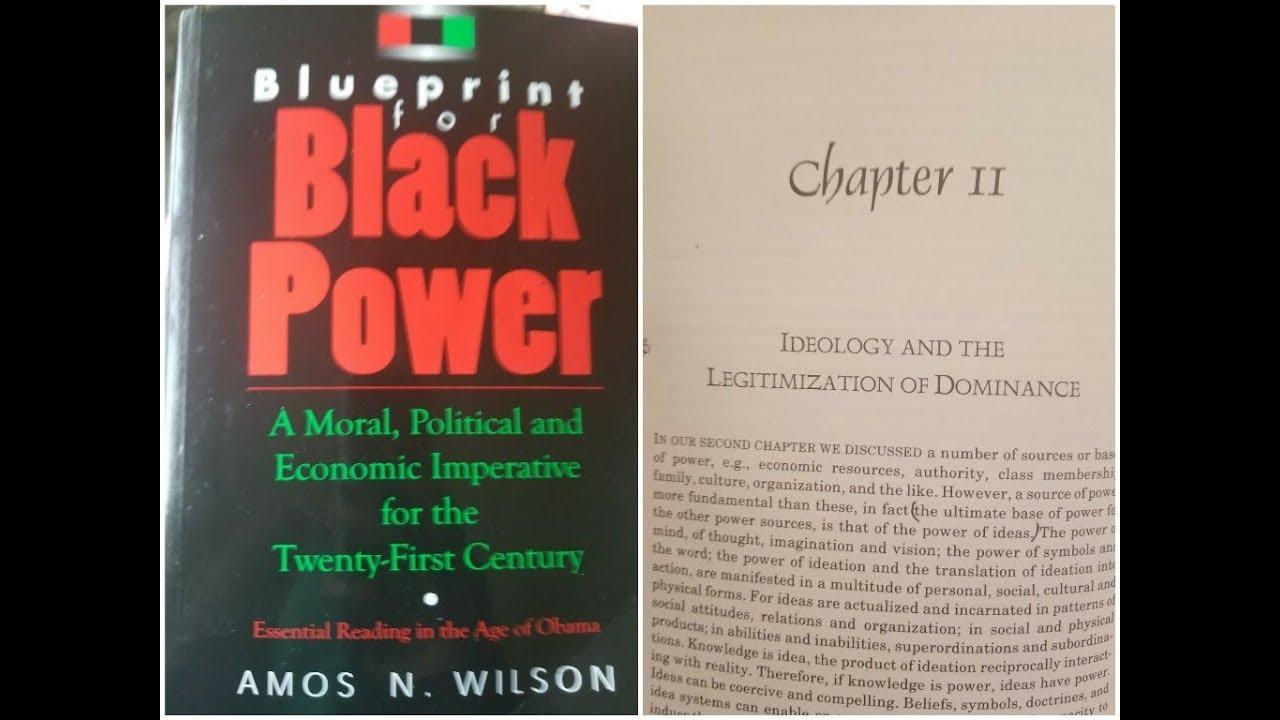 Dr amos wilson blueprint for black power chapter 11 ram bookclub dr amos wilson blueprint for black power chapter 11 ram bookclub malvernweather Images