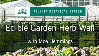 Learn about the Herb Wall in the Edible Garden! Get tips on how to ...