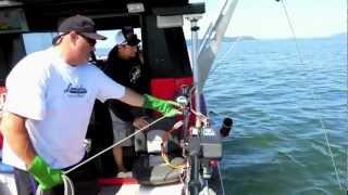 Puget Sound Crabbing