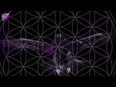 Si Genaro  - When the Last Bird Flies (FUTURE REVIVAL - KILLING LOVE REMIX)