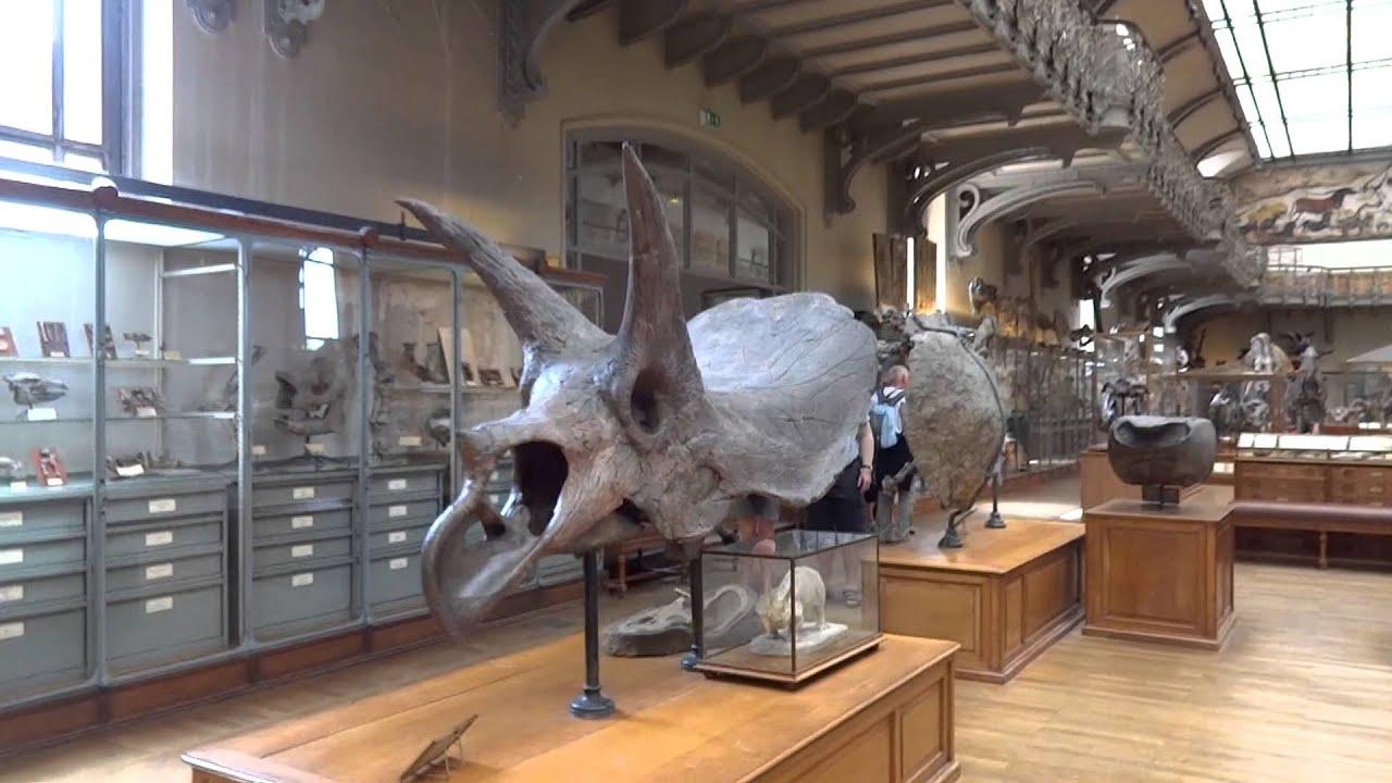 Museu de Hist³ria Natural Jardin des Plantes Paris
