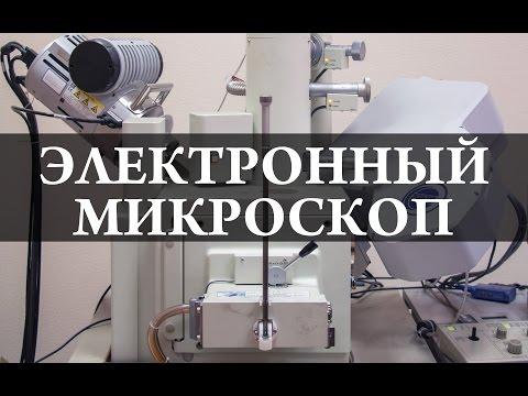 Как устроен электронный микроскоп
