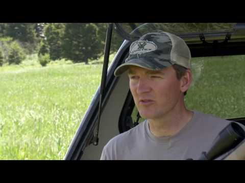 Firearm Safety: How To Load and Unload a Bolt-Action Rifle With Janis Putelis