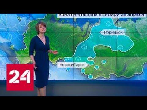 Погода 24: Россия берет курс на тепло - Россия 24
