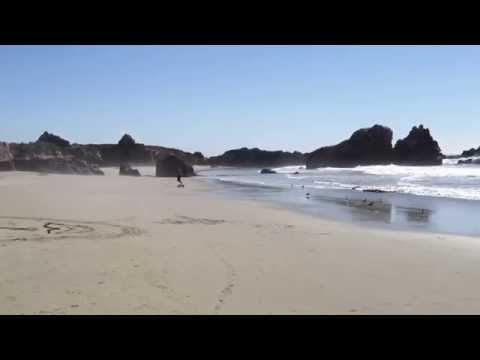 Beach Skate - Plaskett Creek, Big Sur