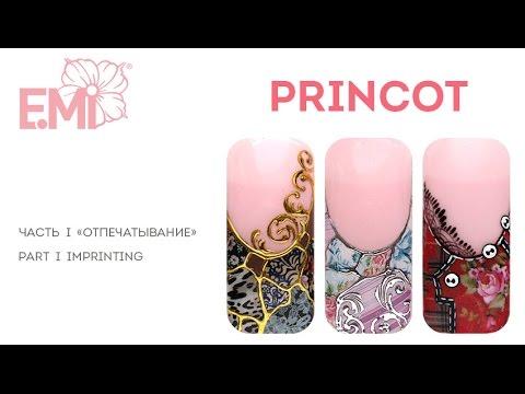 Как работать с PRINCOT E.Mi: I cпособ