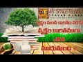 Paper Manufacturing Process From Wood || Paper Making Process From Trees || My Space Telugu
