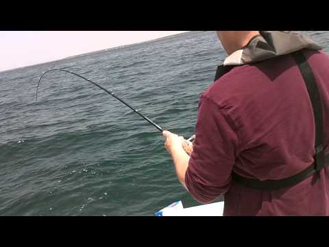 Fishing in plymouth harbor,  MA