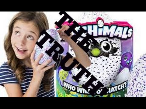The Truth Behind Hatchimals (WORST THING EVER!) thumbnail
