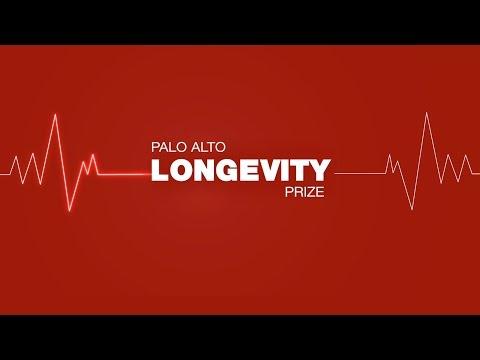 PALO ALTO PRIZE - PERSONAL STORIES