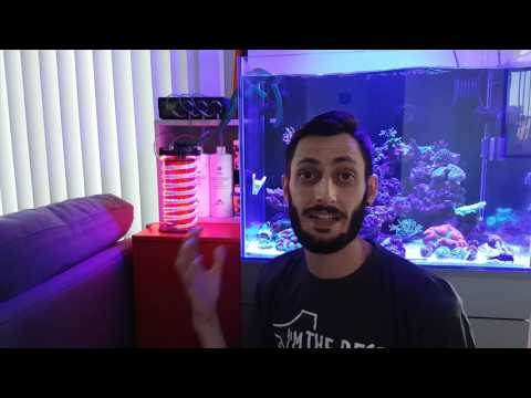 DIY Chaeto Reactor Update