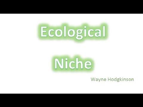 Ecological niche - fundamental & realised