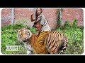 di indonesia juga ada 5 persahabatan manusia dengan hewan buas