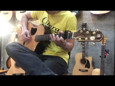 Natasha Guitar S45 Limited Edition Review2 By Citara House Of Guitar