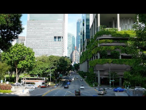 Big Questions, Big Ideas: The Sustainable City with Steven Cohen