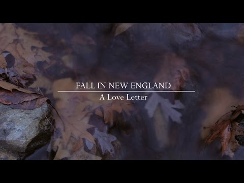 FLY FISHING NEW ENGLAND- A Love Letter To Fall