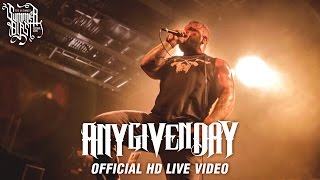 Any Given Day - Summerblast 2015 (Official HD Live Video)