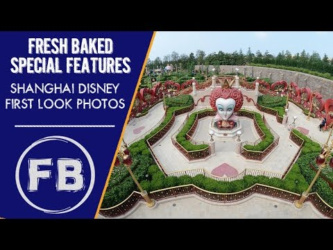 First look photos from Shanghai Disney pre-opening | They're beautiful!!