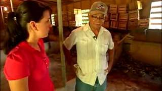 Puertorriqueñísimo - Luquillo - Crianza de jueyes