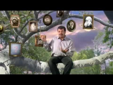 NOVA scienceNOW : 41 - First Primates