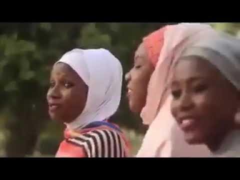 Download Zainab ambato