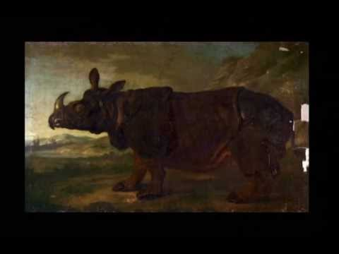 Conservation of Jean-Baptiste Oudry's Rhinoceros Painting