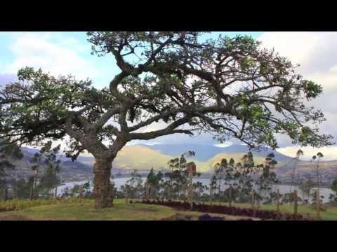 Otavalo and Cotacachi Ecuador Experience