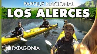 El Bosque Milenario, Parque Nacional Los Alerces  | Capítulo 1 | Hoy No Duermo en Casa