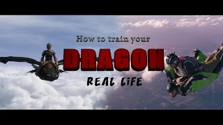 How to train your dragon – REAL LIFE